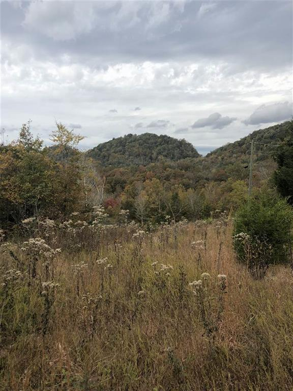 Lot 3 Lick Creek, Tellico Plains, TN 37385 (MLS #1299642) :: Chattanooga Property Shop