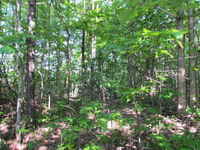 13 Tranquil Acres, Sequatchie, TN 37374 (MLS #1300073) :: Keller Williams Realty | Barry and Diane Evans - The Evans Group