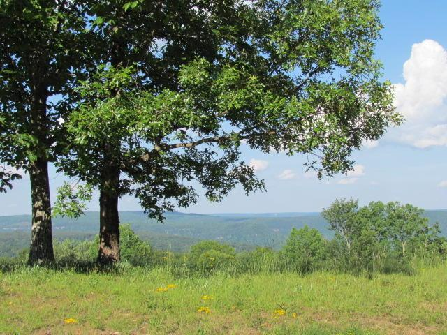 8 Tranquil Acres Rd, Sequatchie, TN 37374 (MLS #1300075) :: Keller Williams Realty | Barry and Diane Evans - The Evans Group