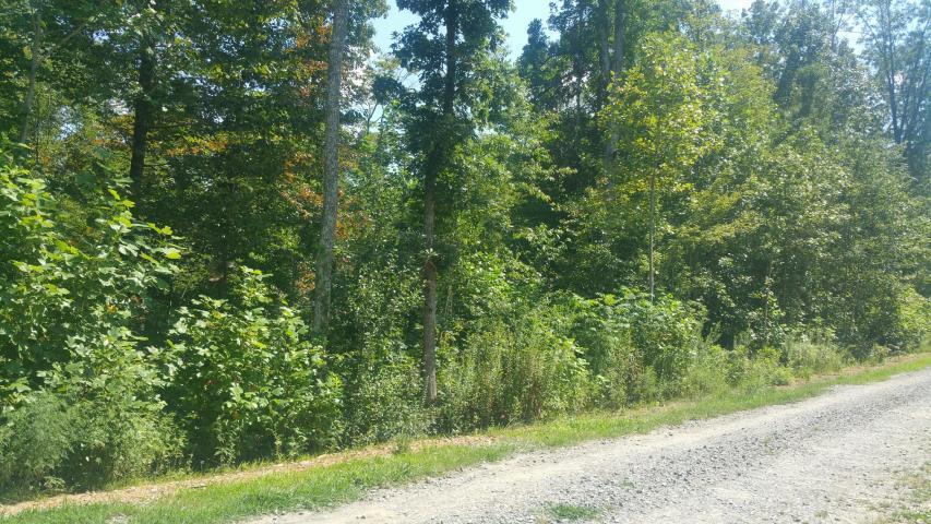 20 Meadow Lark Rd - Photo 1