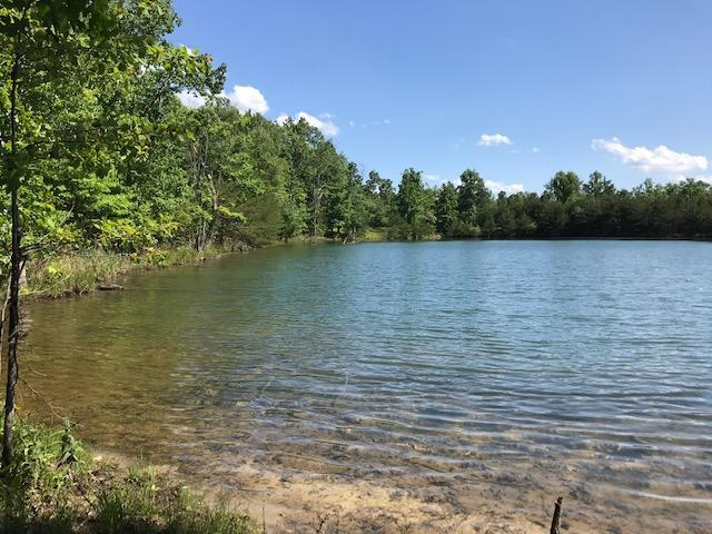 100 Bluff View Dr #100, Dunlap, TN 37327 (MLS #1300329) :: Chattanooga Property Shop