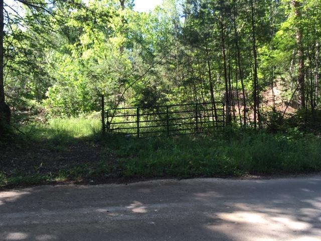 0 Durham Rd, Rising Fawn, GA 30738 (MLS #1300770) :: Grace Frank Group