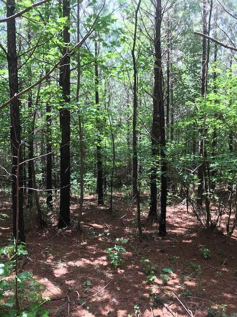 Lot 4 Clouse Hill Road Lot 4, Tracy City, TN 37387 (MLS #1301605) :: Keller Williams Realty | Barry and Diane Evans - The Evans Group