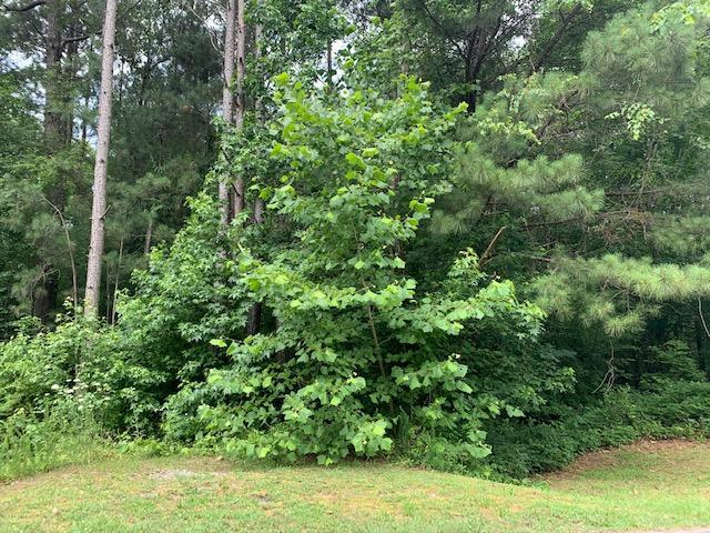 0 Night Wind Dr, Chatsworth, GA 30705 (MLS #1301616) :: Keller Williams Realty   Barry and Diane Evans - The Evans Group