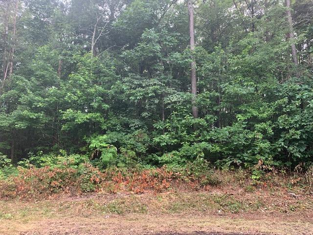 Lot 55 Crabtree Dr, Tunnel Hill, GA 30755 (MLS #1301831) :: Keller Williams Realty | Barry and Diane Evans - The Evans Group