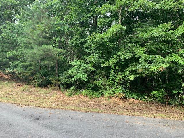 Lot 57 Crabtree Dr, Tunnel Hill, GA 30755 (MLS #1301834) :: Grace Frank Group