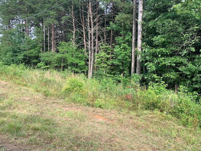 Lot 30 Crabtree Dr, Tunnel Hill, GA 30755 (MLS #1301836) :: Keller Williams Realty | Barry and Diane Evans - The Evans Group