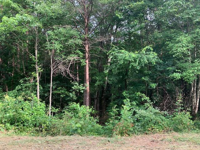 Lot 31 Crabtree Dr, Tunnel Hill, GA 30755 (MLS #1301837) :: Keller Williams Realty | Barry and Diane Evans - The Evans Group