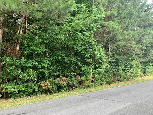 Lot 34 Crabtree Dr, Tunnel Hill, GA 30755 (MLS #1301838) :: Keller Williams Realty | Barry and Diane Evans - The Evans Group