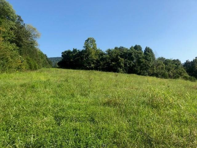 6086 Upper East Valley Rd, Pikeville, TN 37367 (MLS #1302931) :: Grace Frank Group