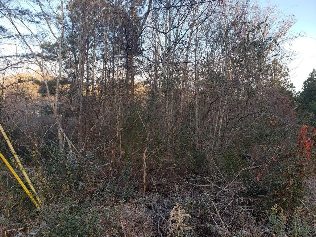 0 Timbervale Dr - Photo 1