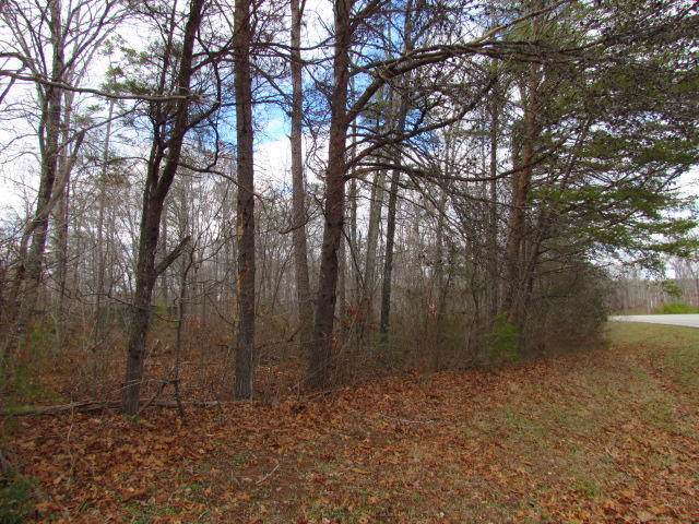 0 State Route 56, Coalmont, TN 37313 (MLS #1307773) :: Grace Frank Group