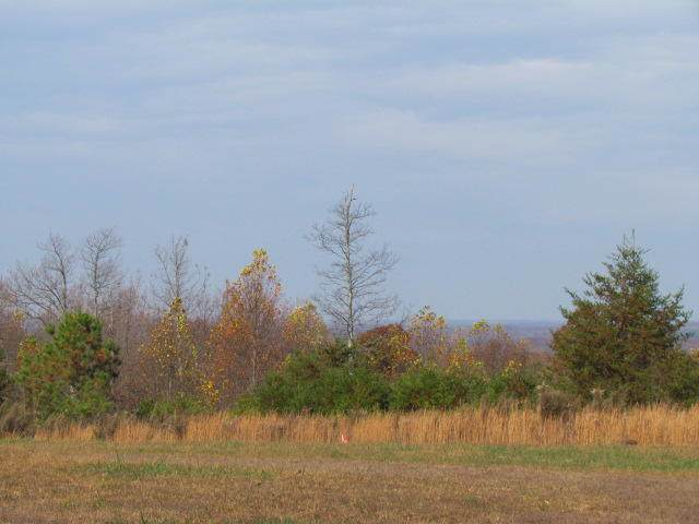 2075 Lower Fire Tower Rd, Sequatchie, TN 37374 (MLS #1307778) :: Keller Williams Realty | Barry and Diane Evans - The Evans Group