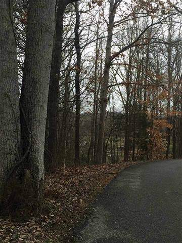 0 New Providence Rd, Tellico Plains, TN 37385 (MLS #1307811) :: Chattanooga Property Shop