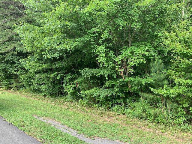 Lot 12 Langley Dr, Tunnel Hill, GA 30755 (MLS #1309188) :: Chattanooga Property Shop