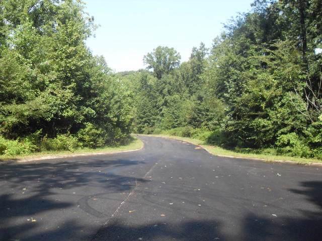 009 Loblolly Ln, Tunnel Hill, GA 30755 (MLS #1309449) :: The Robinson Team
