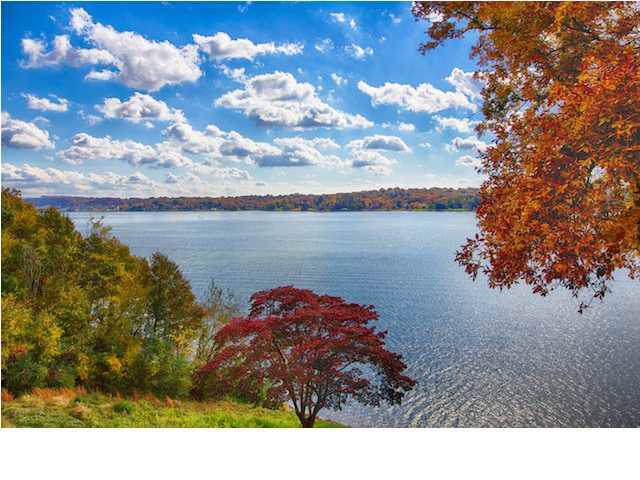 4316 Lakeshore Ln Unit 302, Chattanooga, TN 37415 (MLS #1309482) :: Grace Frank Group