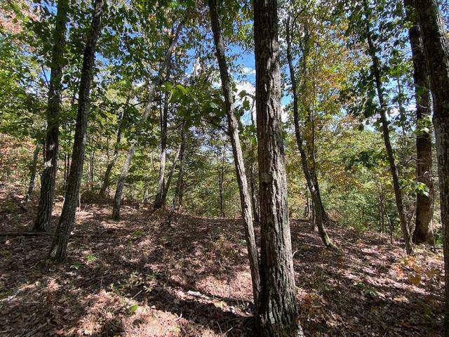 Lot 12 Fife Street #12, South Pittsburg, TN 37380 (MLS #1309925) :: Keller Williams Realty | Barry and Diane Evans - The Evans Group