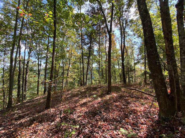 Lot 13 Scots Point #13, South Pittsburg, TN 37380 (MLS #1309928) :: The Edrington Team