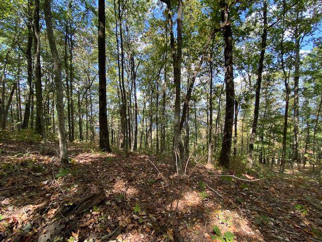 Lot 16 Scots Point #16, South Pittsburg, TN 37380 (MLS #1309929) :: The Edrington Team