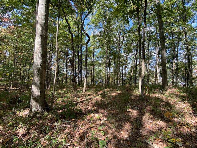 Lot 17 Fife Street #17, South Pittsburg, TN 37380 (MLS #1309932) :: Keller Williams Realty | Barry and Diane Evans - The Evans Group