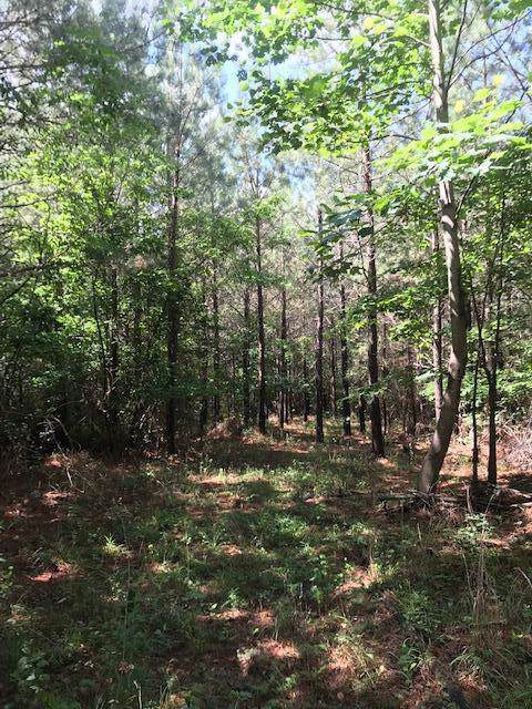 Lot 6 Clouse Hill Road #6, Tracy City, TN 37387 (MLS #1309942) :: Chattanooga Property Shop