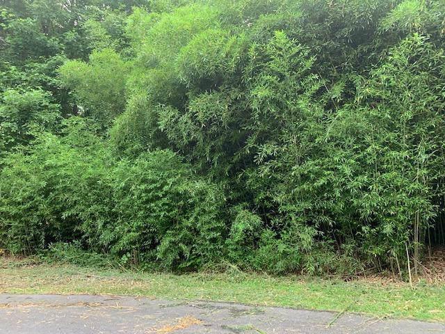 Lot 54 Crabtree Dr, Tunnel Hill, GA 30755 (MLS #1310944) :: The Edrington Team