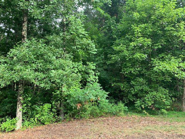 Lot 56 Crabtree Dr, Tunnel Hill, GA 30755 (MLS #1310945) :: Keller Williams Realty | Barry and Diane Evans - The Evans Group