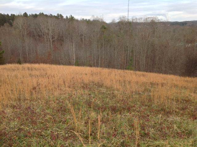 30 Escape Dr Lot #30, Evensville, TN 37332 (MLS #1311523) :: Austin Sizemore Team