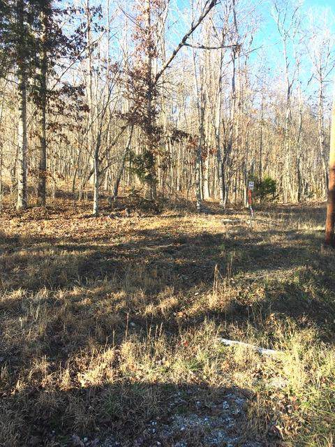 4443 Parker Loop Rd Tract 3, Birchwood, TN 37308 (MLS #1311817) :: Grace Frank Group