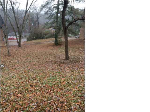 216 Buena Vista Dr, Chattanooga, TN 37404 (MLS #1311988) :: Chattanooga Property Shop