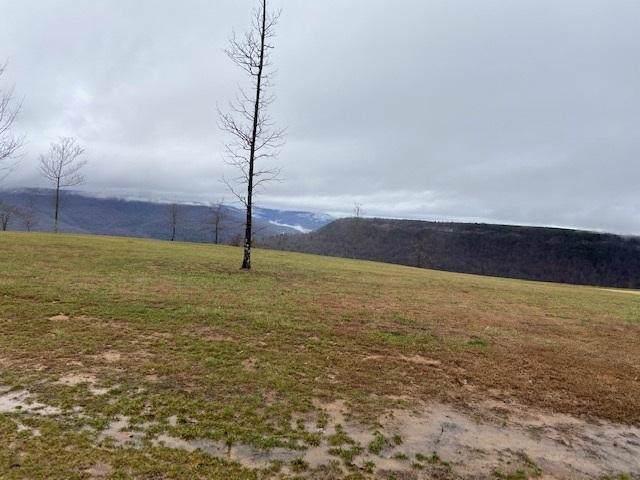 145 Gobbler Pass #145, Jasper, TN 37347 (MLS #1312074) :: Keller Williams Realty | Barry and Diane Evans - The Evans Group