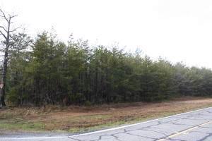 44 Gilreath Mill Rd, Menlo, GA 30731 (MLS #1312256) :: Grace Frank Group