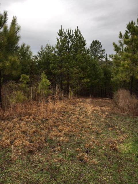 206 Bob White Rd, Ocoee, TN 37361 (MLS #1312875) :: Chattanooga Property Shop