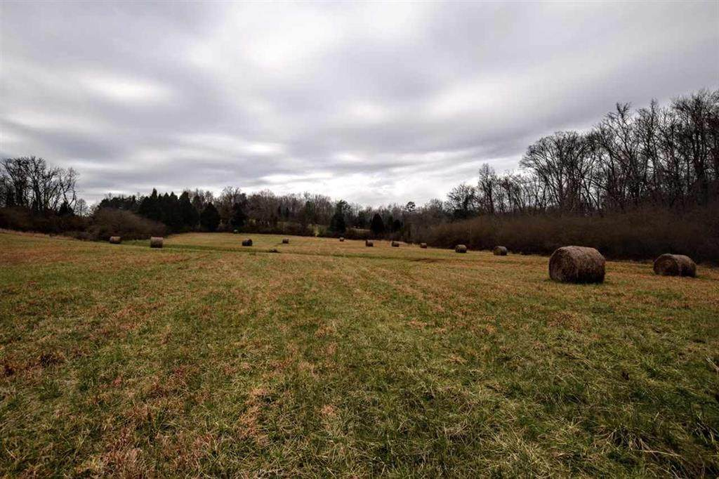 73.16 Ac Toestring Valley Rd - Photo 1