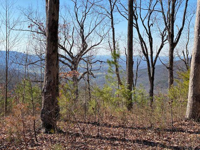 Lot 38 Long View Lane #38, Monteagle, TN 37356 (MLS #1314058) :: The Edrington Team