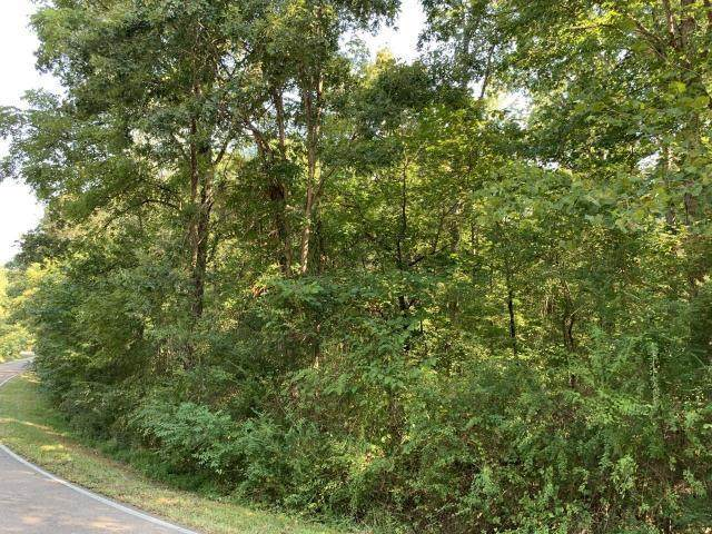 4659 Parker Loop Rd, Birchwood, TN 37308 (MLS #1314771) :: Keller Williams Realty | Barry and Diane Evans - The Evans Group