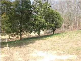 846 NW Deer Run Ln #8, Cleveland, TN 37311 (MLS #1314945) :: Chattanooga Property Shop