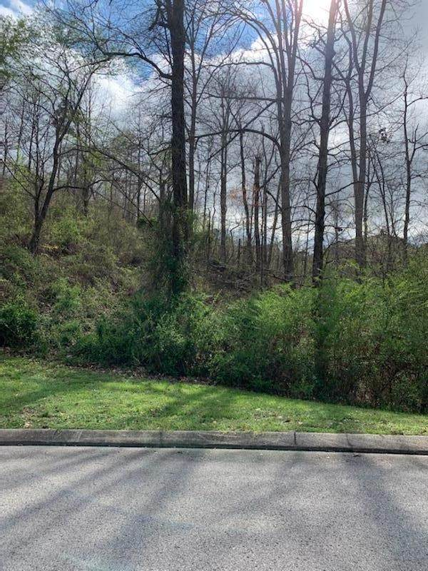 0 The Pointe Dr, Ringgold, GA 30736 (MLS #1315317) :: Keller Williams Realty | Barry and Diane Evans - The Evans Group