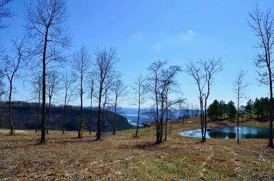 0 Misty View Ct Lot 53, Jasper, TN 37347 (MLS #1315810) :: Keller Williams Realty | Barry and Diane Evans - The Evans Group