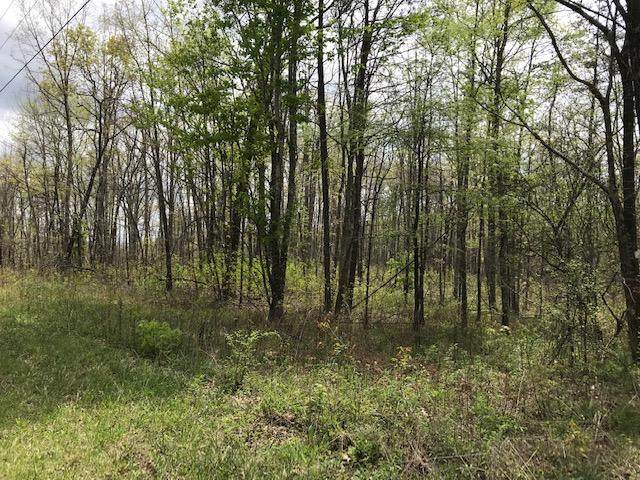34 Dogwood Flats Rd, Pikeville, TN 37367 (MLS #1316864) :: Chattanooga Property Shop