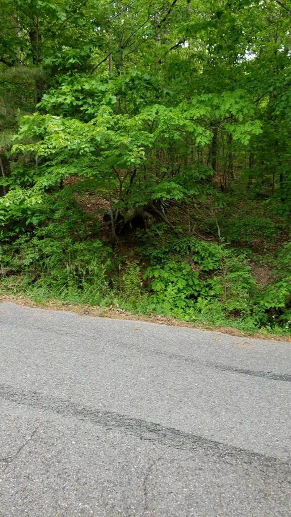3 New Summit Hill Rd, Ringgold, GA 30736 (MLS #1317331) :: Chattanooga Property Shop