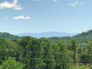 103 Hunters Tr #6, Sweetwater, TN 37874 (MLS #1317580) :: Chattanooga Property Shop