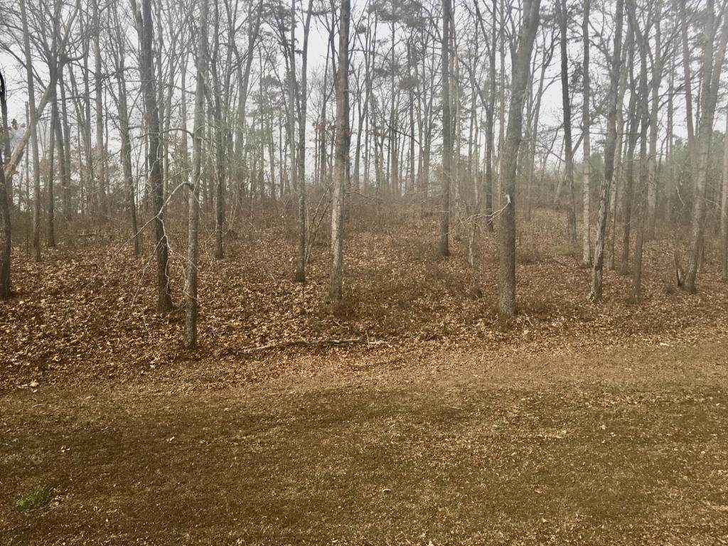Tract #1 Country Estates Rd - Photo 1