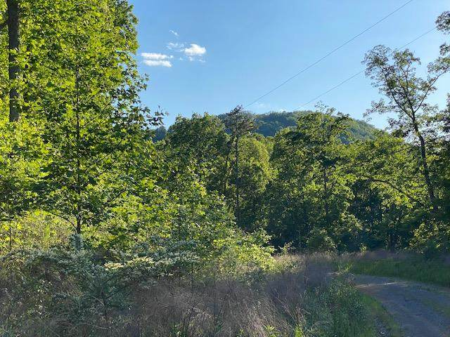 Lot 138 Teludachee Trail Lto 138, South Pittsburg, TN 37380 (MLS #1317647) :: Keller Williams Realty | Barry and Diane Evans - The Evans Group