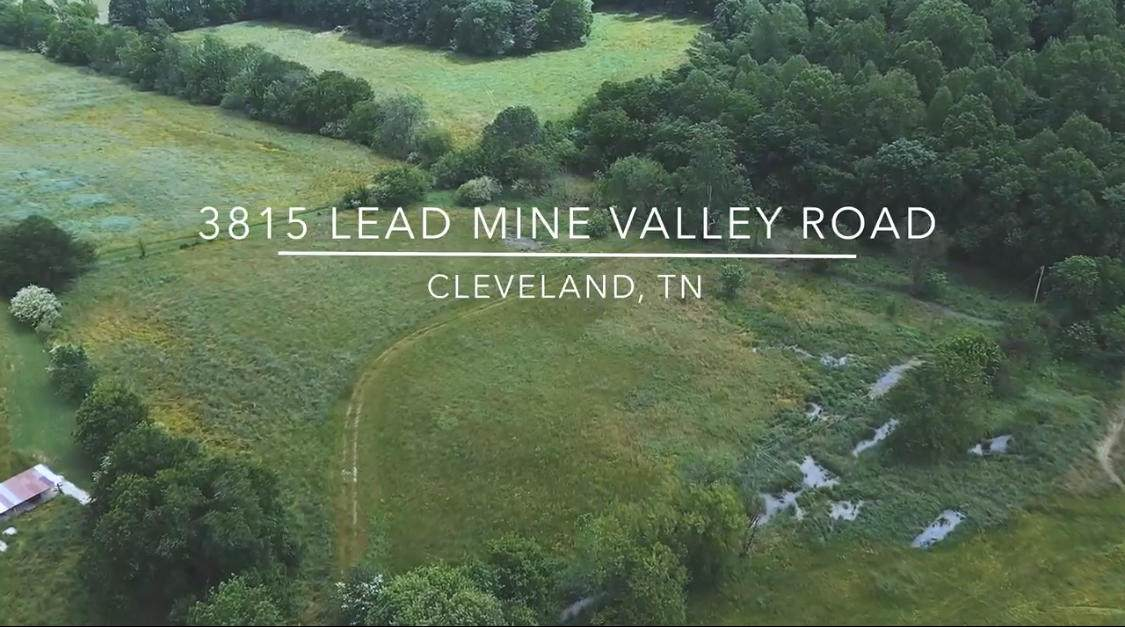 3815 Lead Mine Valley Rd - Photo 1