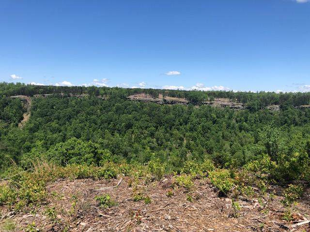 0 Raulston Falls Rd #31, Jasper, TN 37347 (MLS #1318206) :: Chattanooga Property Shop
