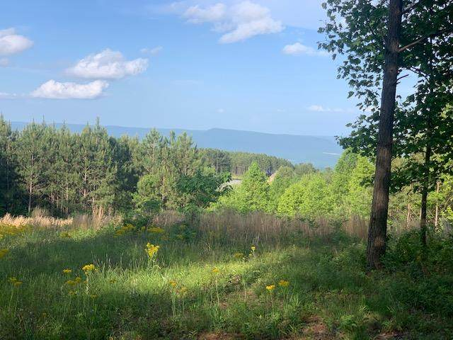 0 Lookout View Dr #170, Jasper, TN 37347 (MLS #1318359) :: The Mark Hite Team