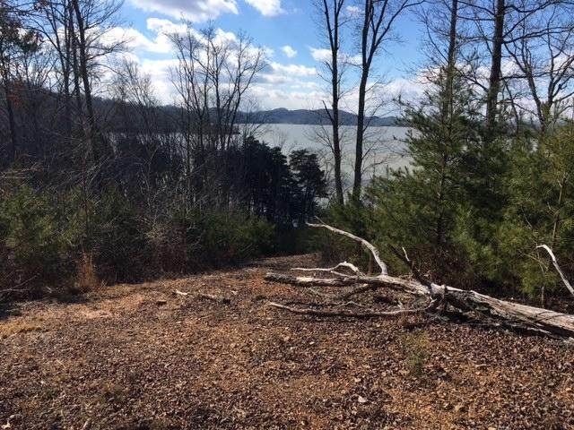 0 W Rockwood Ferry Rd, Ten Mile, TN 37880 (MLS #1319382) :: Keller Williams Realty | Barry and Diane Evans - The Evans Group