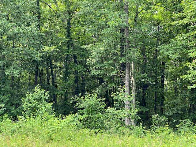 Lot 10 Three Forks Road #10, South Pittsburg, TN 37380 (MLS #1319699) :: 7 Bridges Group